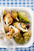 Cooked whelks in a styrofoam container on a blue and white checked surface