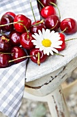 Fresh cherries with an oxeye daisy on a wooden table