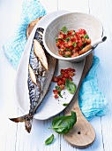Grilled mackerel with tomato lecsó
