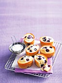 Blueberry and lemon friands on a wire rack