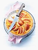 Fruit flan, one slice cut