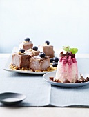 Slices of chocolate ice cream and ice cream cake on a plate
