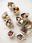 Verschiedene Kartoffelsorten in Leinensäcken mit Schild