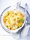 Savoy cabbage-salmon gratin with potatoes