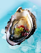 Oyster with fish roe and salad