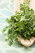 Fresh parsley on a wooden serving platter