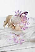 Stillleben einer Scillablüte mit Putenei und Hostablättern auf weisser Tischdecke