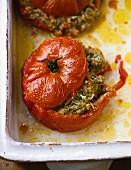 Tomaten mit Linsen-Gemüsefüllung