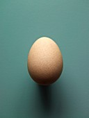 A brown hen's egg, size S