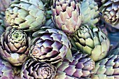 Lots of artichokes