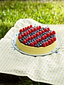 Blueberry and Raspberry Cheesecake on a Blanket int he Grass