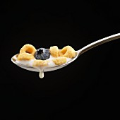 Spoonful of Cereal with Milk and a Blueberry