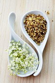 Fresh and dried elderflowers