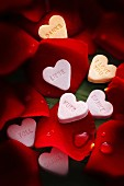 Red rose petals with sugar hearts