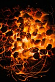 Glowing barbecue coals