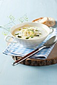 Creamy cheese soup with fennel (Styria, Austria)