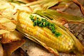 Barbecued corn on the cob with pesto