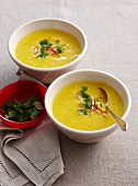 Squash soup with lemon grass, rice noodles and coriander (Thailand)