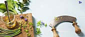 Herbs and a curved chopping blade