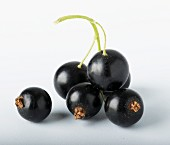 Several blackcurrants against a white background