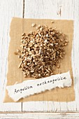 Garden angelica (Angelica archangelica), dried