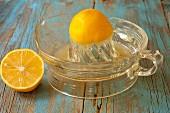 Halbe Meyer Lemons mit Zitronenpresse