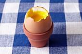 A soft-boiled egg in a miniature flowerpot