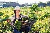 Junge Frau präsentiert stolz frisch geerntes Gemüse auf dem Feld