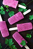 Currant Popsicles