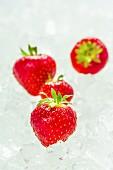 Strawberries on ice