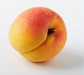 Eine Aprikose (Close-up)