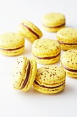 Yellow macaroons with chocolate and passion fruit