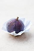 A fig on paper