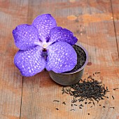 Tea leaves and a purple orchid