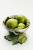 Limes with leaves in a silver bowl