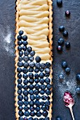blueberry tart with fresh blueberries