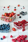 blueberries, blackberries, raspberries, strawberries, redcurrants on a white table