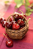 Fresh cherries in a basket