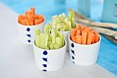 Gurken- und Karottensticks