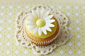A cupcake decorated with an oxeye daisy on a lace doily