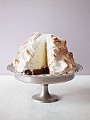 Baked Alaska (ice cream coated in meringue)
