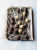 Cake pops on a baking tray