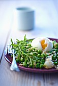 Rice with peas and a boiled egg