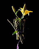 A bunch of green asparagus and yellow lilies against a black background
