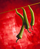 Three green chilli peppers hanging from a line against a red background