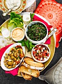 Mezze (grüne Oliven mit Mandeln, Tabouleh, Wassermelonensalat) mit Hummus und Toastbrot