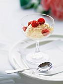 Apricot parfait with fresh raspberries