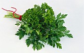 Curly and flat-leaf parsley, tied in a bunch