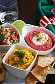 Squash and garlic dip, tomato and mint salsa, and beetroot houmous
