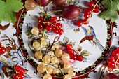 Assorted berries on a patterned plate